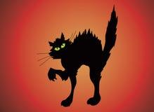 katt halloween Arkivbild