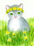 Katt i blommor Fotografering för Bildbyråer