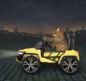 Katt i den gula bilen 2 arkivfoto
