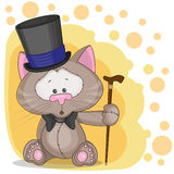 Katt i en hatt Fotografering för Bildbyråer