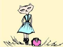 Katt i en klänning med en påse royaltyfri foto