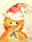 Katt i en santa hatt Royaltyfri Foto