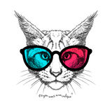 Katt i exponeringsglas 3D Royaltyfri Fotografi