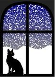 Katt i fönster på den snöig natten Arkivfoto
