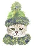 Katt i grön hatt och halsduk stock illustrationer