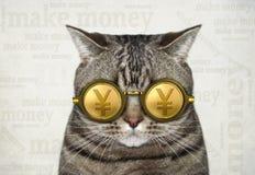 Katt i guld- yenexponeringsglas 2 royaltyfri foto