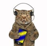 Katt i hörlurar med en smartphone royaltyfria bilder