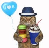 Katt i hatt med kaffe och kex arkivfoton