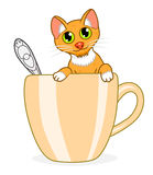 Katt i kopp Royaltyfria Foton