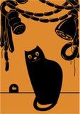 Katt i lagringen av mat Arkivfoton