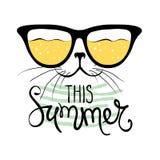 Katt i solglasögon Arkivbilder
