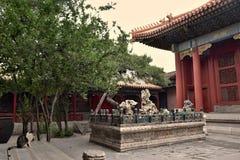 Katt inom Forbiddenet City i Peking Royaltyfri Bild