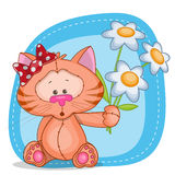 Katt med blommor Royaltyfri Foto