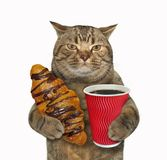 Katt med chokladbullen och kaffe arkivbild