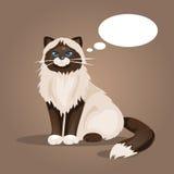 Katt med ett moln av tankar också vektor för coreldrawillustration Fotografering för Bildbyråer