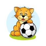 Katt med fotboll ball2 Royaltyfri Fotografi
