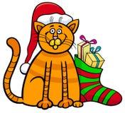 Katt med gåvor på jultid Royaltyfri Foto