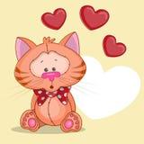 Katt med hjärtor Arkivbilder
