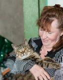 Katt med orange ögon Royaltyfri Fotografi