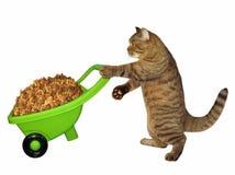 Katt med skottkärran av torr matning vektor illustrationer
