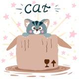 Katt och ask gullig illustration Idé för tryckt-skjorta royaltyfri illustrationer
