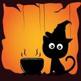 Katt och halloween Arkivfoto