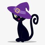 Katt och hatt Arkivbild