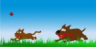 Katt och hund Royaltyfri Bild