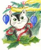 Katt och julpynt Royaltyfria Foton