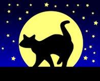 Katt och måne Arkivfoto