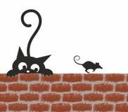 Katt och mus Arkivfoto