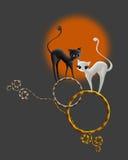 Katt och ram vektor illustrationer