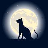 Katt på ett tak mot månen Royaltyfri Bild