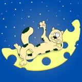 Katt på månen den främmande tecknad filmkatten flyr illustrationtakvektorn stock illustrationer