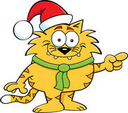 Katt Santa Arkivfoto