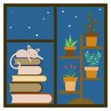 Katt som sover på en bunt av böcker på fönstret Fotografering för Bildbyråer