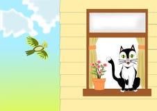 Katt vid fönstret Royaltyfria Bilder