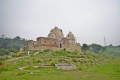 Kattas Raj Fotografia de Stock