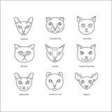 Kattavellinje symbolsuppsättning stock illustrationer