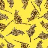 Kattbakgrund Royaltyfri Fotografi