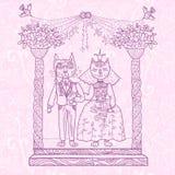 Kattbröllop Fotografering för Bildbyråer