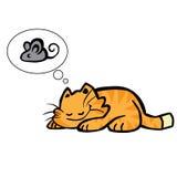 kattdrömmar Arkivbild