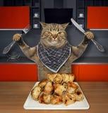 Katten äter grillat kött i ett kök royaltyfri fotografi