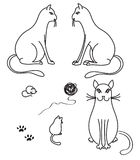 Katten Stock Afbeeldingen