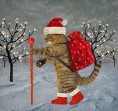 Katten bär julgåvor royaltyfri illustrationer