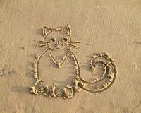 Katten blöter på sanden Arkivfoto