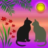 Katten in de tuin Royalty-vrije Stock Afbeelding