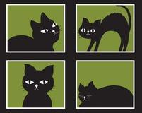 Katten die uit het venster kijken Stock Foto's