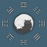 Katten die in vorm van Zen, Yin Yang slapen royalty-vrije illustratie