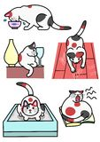 Katten diverse uitdrukkingen en acties Royalty-vrije Stock Afbeeldingen